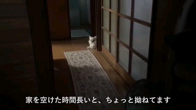 家を〜字幕
