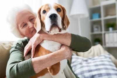 おばあさんに抱かれている犬