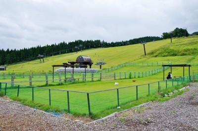 高原の芝生のドッグラン