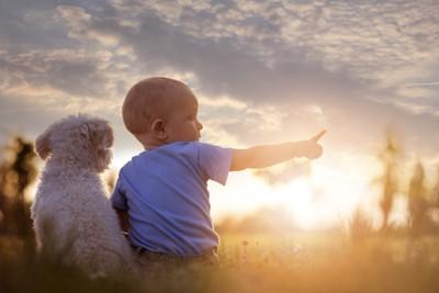 子供と犬の後ろ姿