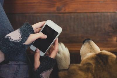 携帯と飼い主さん