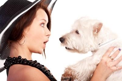 犬を抱っこして驚く女性