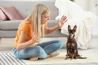 隣に座って犬を叱っている女性