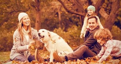 落ち葉の上で家族とくつろぐ犬