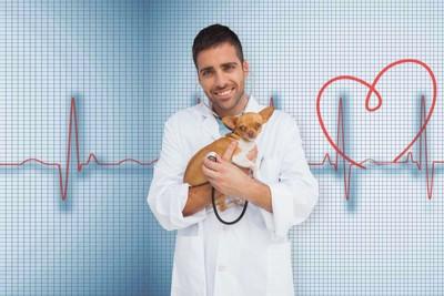 心電図のイメージと犬を抱く獣医師