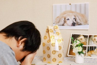愛犬の遺骨と写真の前で悲しむ男性