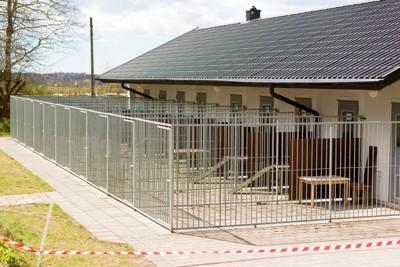 フェンスで囲まれた犬舎