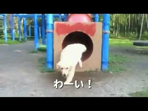 わーい!〜字幕
