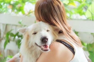 女性に抱きしめられて嬉しそうな犬