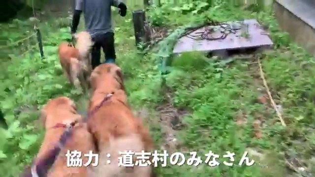 協力:~字幕