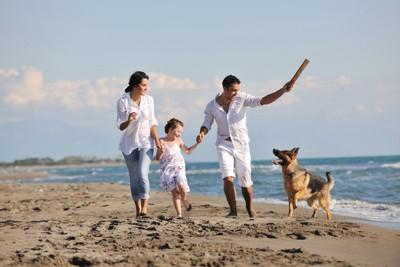 浜辺で遊ぶ家族と犬