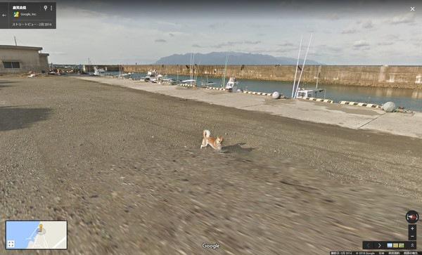 ストリートビューに写り込んだ柴犬が車に追いついた