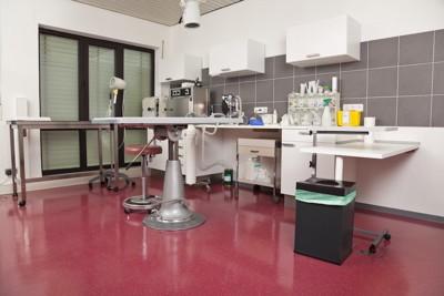 動物病院の診療室