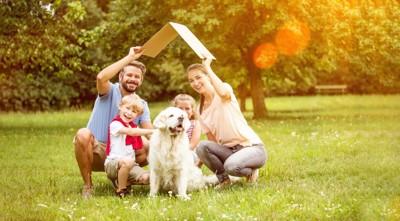 芝生で遊ぶ家族と犬