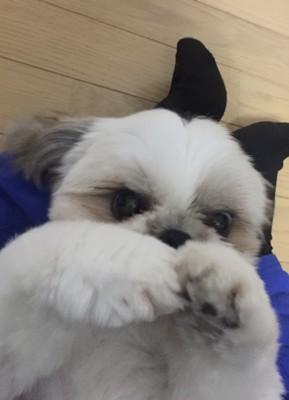 ちぇるしーの投稿画像