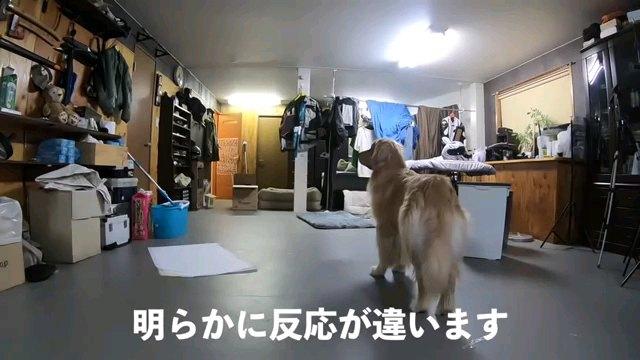 明らかに~字幕