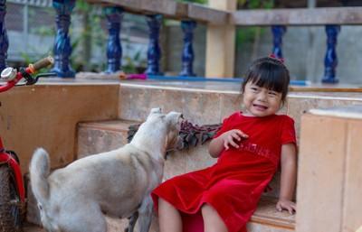 犬をこわがる小さな女の子
