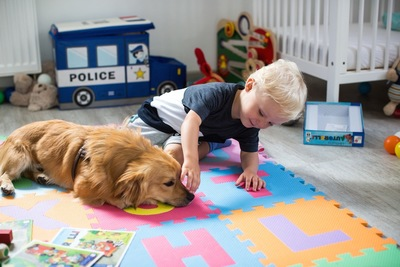 犬の鼻を触る子供