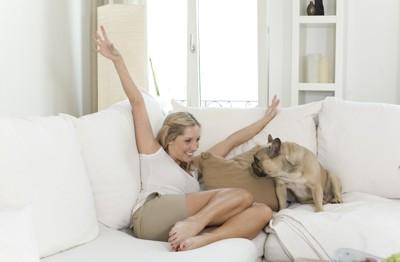 ソファーの上にいる女性とフレンチブル