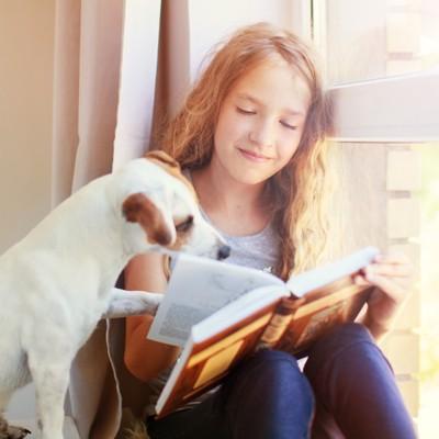 本に手を差し伸べる犬