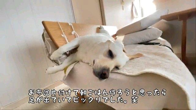 お布団~字幕