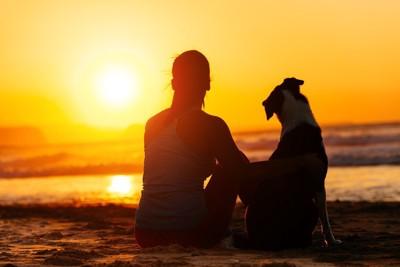 サンセットを見つめる女性と犬
