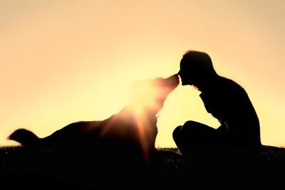 顔を近づける女性の犬のシルエット