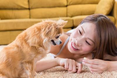 犬に話しかけている女性