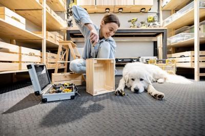 DIYをする女性と白い犬