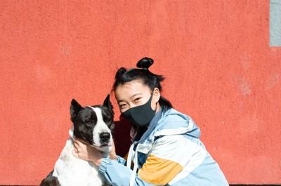 マスクを着けた女の子と犬
