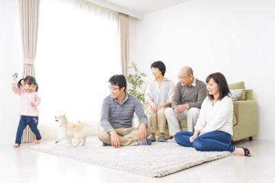 部屋で家族と遊ぶ犬