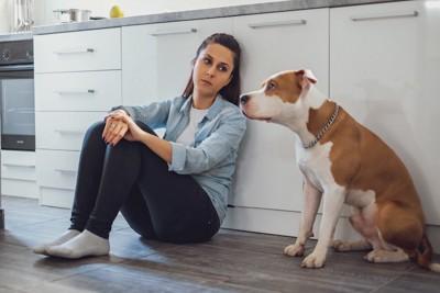 困り果てた表情で犬を見る女性