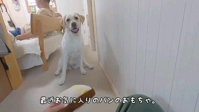 最近~字幕