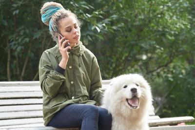 ベンチで電話中の飼い主と待つ犬
