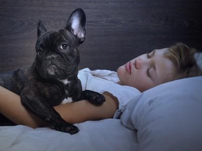 寝ている飼い主と起きている犬