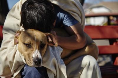 犬を抱きかかえる人