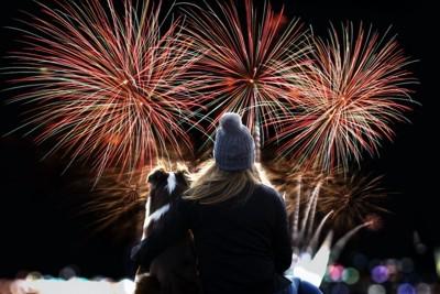花火を見る女性と犬の後ろ姿
