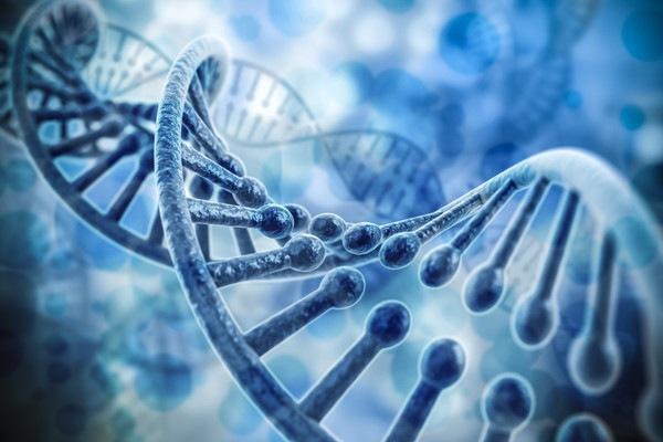 DNA画像?