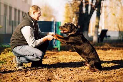 手と手を取り合う犬と男性