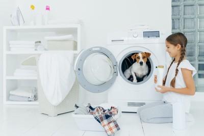 乾燥機の中に入っているジャックラッセルテリアと笑顔の女の子