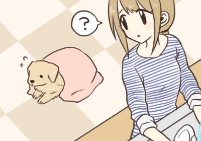 idenshi_dog2