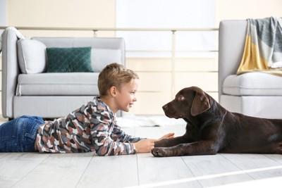 寝転んで見つめ合う犬と男の子