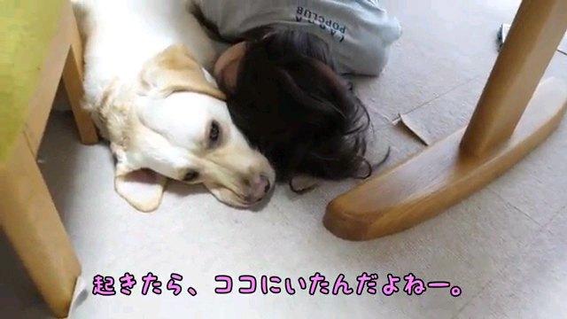 起きたいんだけど…~字幕