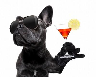 犬がサングラスをかけグラスを持っている