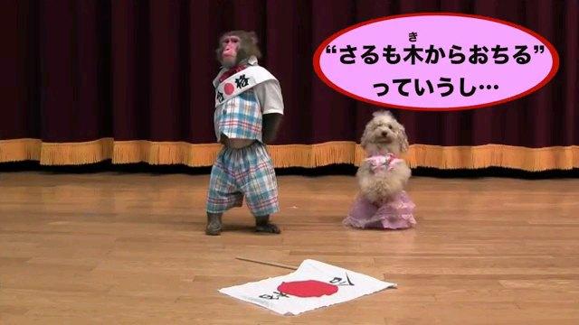 """""""さるも~字幕"""