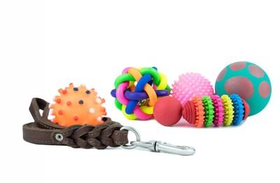 様々な種類の犬のおもちゃ