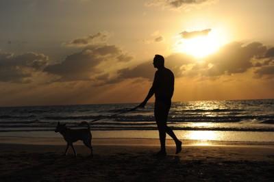 夕暮れの海岸を散歩する男性と犬