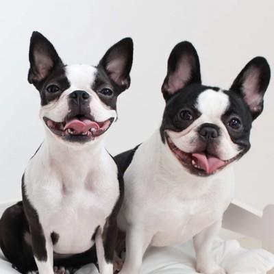 ゼロちゃんとレイちゃんの似顔絵キャンペーン当選写真