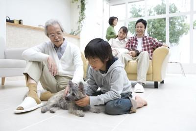 祖父のそばで犬を撫でる男の子と見守る家族