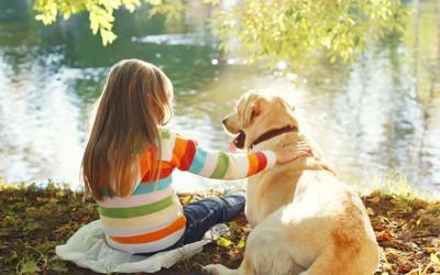 水辺に居る女の子と犬